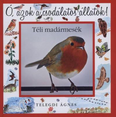 Telegdi Ágnes - Téli madármesék