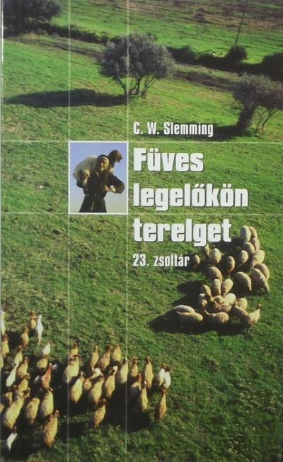 Charles W. Slemming - Füves legelőkön terelget